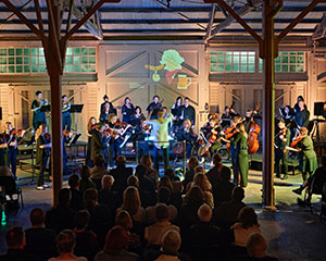 Beethoven, Beer, Bratwurst… and Bjork! | Perth Chamber Orchestra