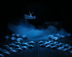 Swan Lake | The Shanghai Ballet